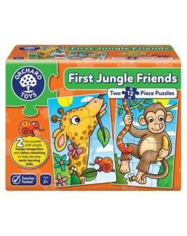 C.T 2X12 - First jungle friends
