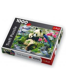 C.T. 1000mcx Panda géant