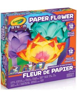 Expérience Scientifique Fleur De Papier N20