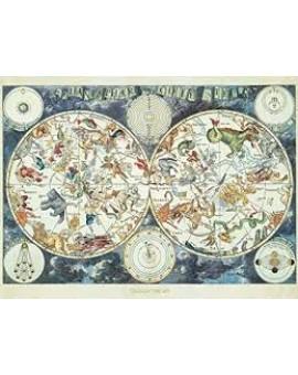 C.t. 1500 Mappemonde Des Animaux Fantastiques N20