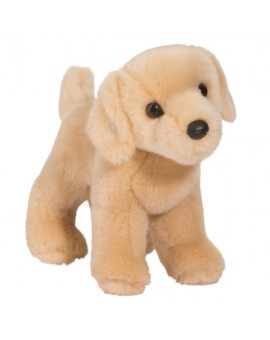 Labrador Blond