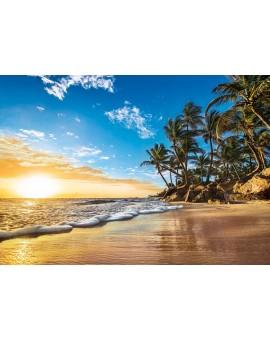 Clem.c.t. 1500 Lever Du Soleil Tropical N20