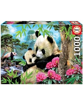 C.t. 1000  Pandas  Educa  N21