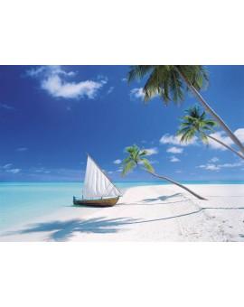 C.T. 1000mcx Îles Maldives