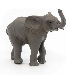 Jeune Elephant N17