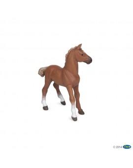 Papo figurine Poulain pur-sang anglais