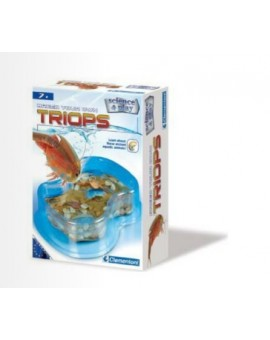 Science & jeu :Triops