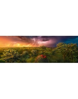 Casse-tête 1000 mcx  Stormy Horizon