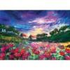 C.t 1000pcs Sundown Poppies N20