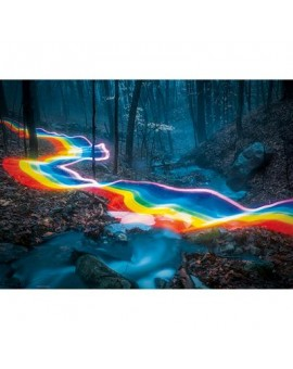 C.t.1000 Rainbow Forests,magic Forests N21