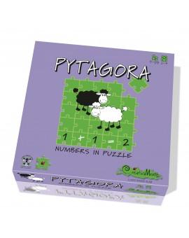 Pytagora N19