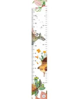 Échelle de croissance (caméléon-renard) N20